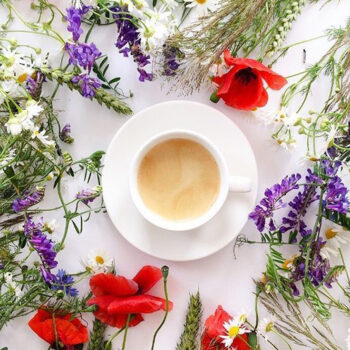 Польза Цветочных Чаев