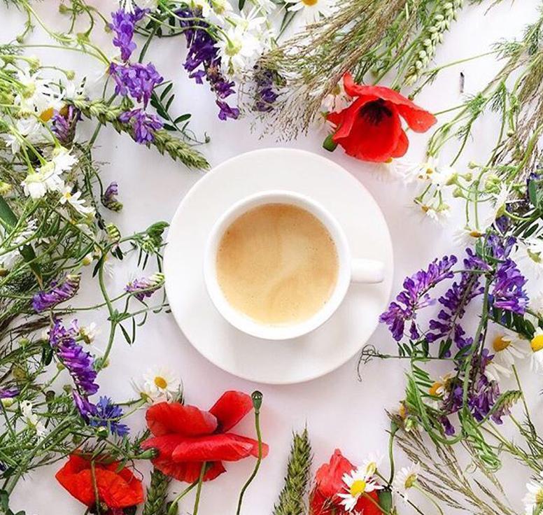 чай и чайная продукция