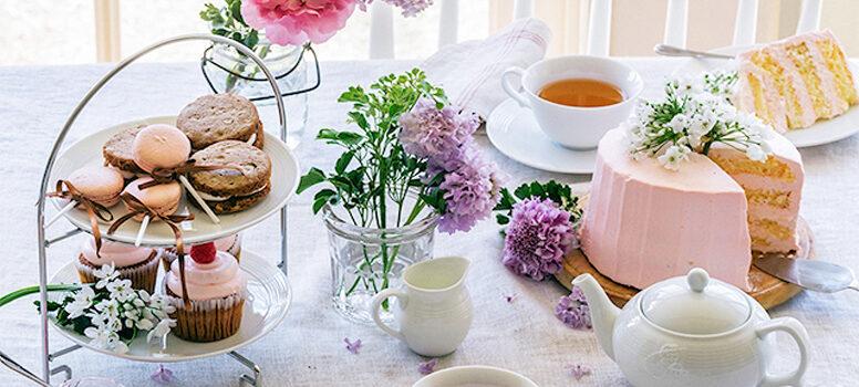 Сравнение чайных культур